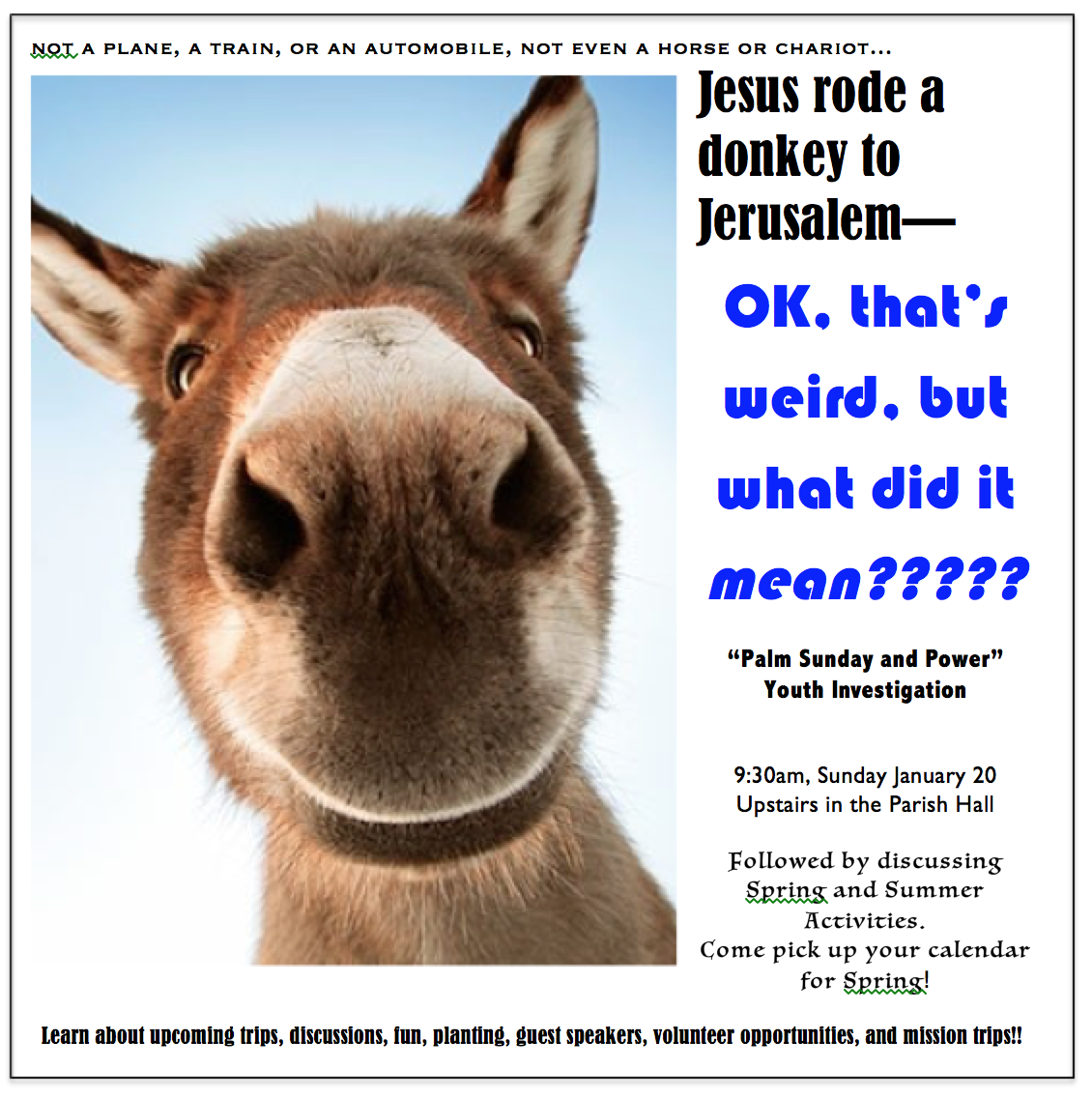 Jesus and the Donkey March 20